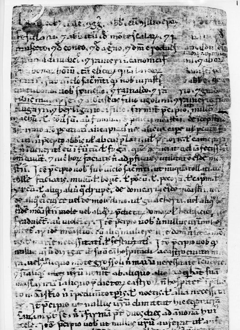 M3 Main Page Firidolfi document p. 1